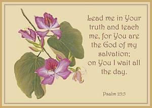 psalm 255