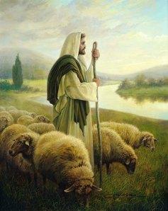 the-good-shepherd-product-image