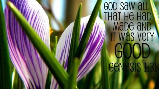 Genesis 1.31