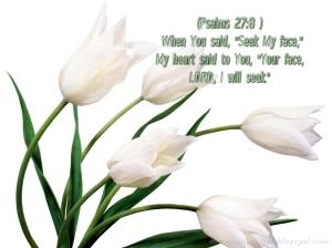 psalms 27-8